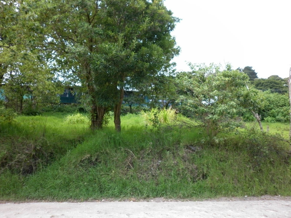 se vende terreno en monte verde