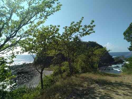 se vende terreno en playa tijera, pochutla, oaxaca.