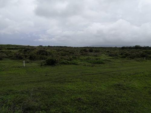 se vende terreno en potrero el alto; municipio de alto lucero, ver.