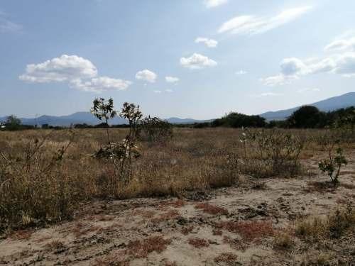 se vende terreno en tlacolula, oaxaca.