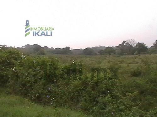 se vende terreno en tuxpam veracruz, 12185 m². gran terreno de 12,185 m², en av. las américas, 241 m. frente a la calle de acceso por la carretera tuxpan-tamiahua en frente del infonavit puerto pesqu