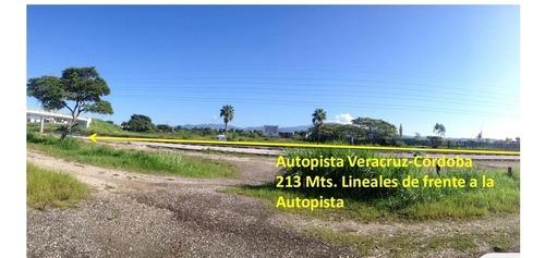 se vende terreno sobre autopista veracruz - córdoba (total o parcial)