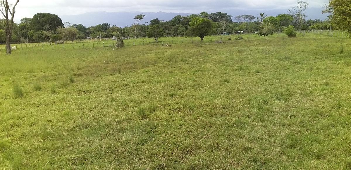 se venden 2 hectareas