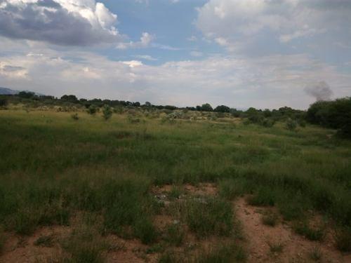 se venden 2 terrenos en villa de reyes de 4 y 2 hectareas