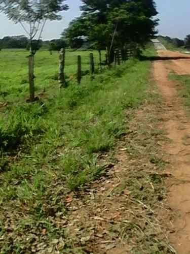 se venden 50 hectáreas de terreno a orilla de autopista acayucan, veracruz.