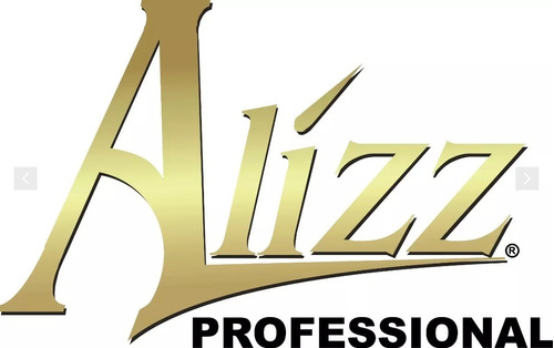 secador de cabello alizz profesional color negro