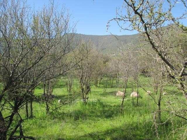 sector cuyuncavi - a pasos camino asfaltado y centro comuna