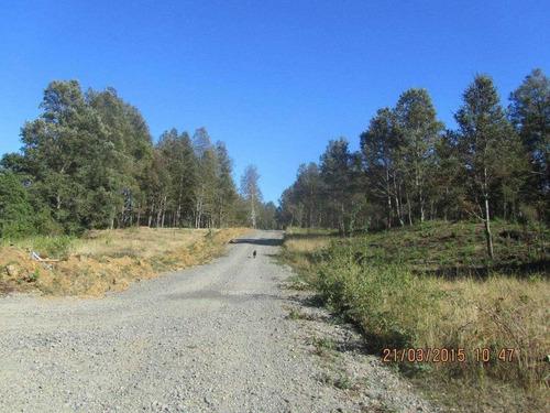 sector el claro a tres kilometros