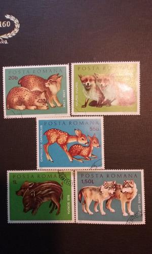 sellos  posta romana 1972 serie de animales