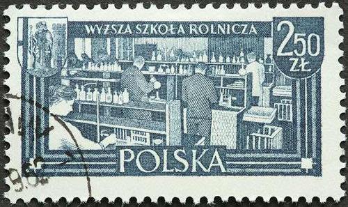 selo polska zignauko  enant.mp