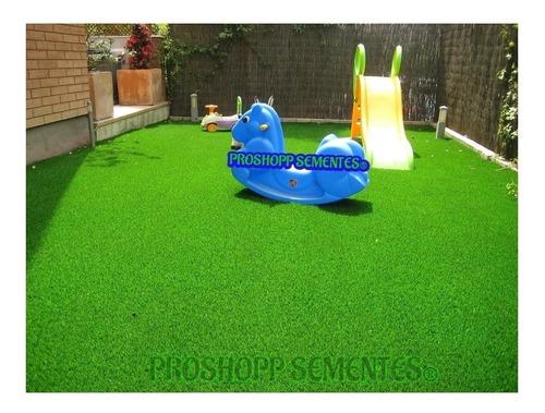 sementes da melhor grama para jardim folha fina p/ 60 m²