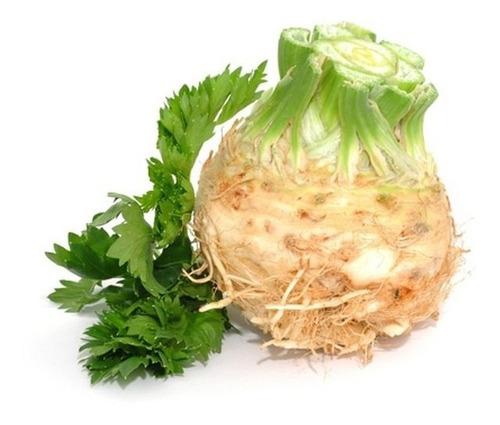 sementes de aipo-rábano salsão de raiz de cabeça aipo-nabo