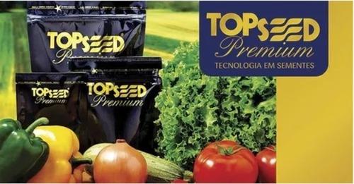 sementes de coentro super verdão 500g topseed premium