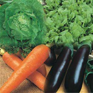 sementes de hortaliças a sua escolha - kit com 6 variedades