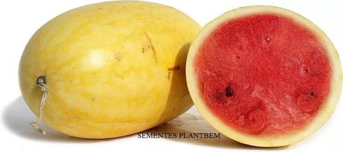 sementes de melancia casca amarela - super carolina cross