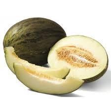 sementes de melão sapo orgânica - 50 sementes