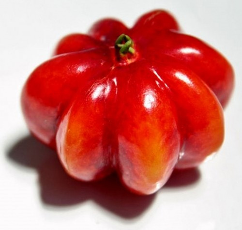 sementes de pimenta pitanga vermelha exótica rara promoção