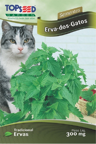 sementes erva dos gatos catnip catmint 1700 a 1800 sementes
