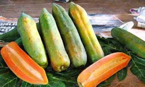sementes frutas anãs para vasos - 40 variedades frete grátis