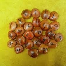 sementes olho de boi - furadas e polidas - 50 un