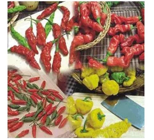 sementes pimenta jalapeño outras kit 12 variedade a escolha