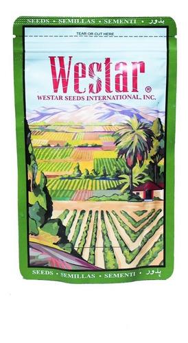 semilla de auyama conneticut field x 100 gr westar