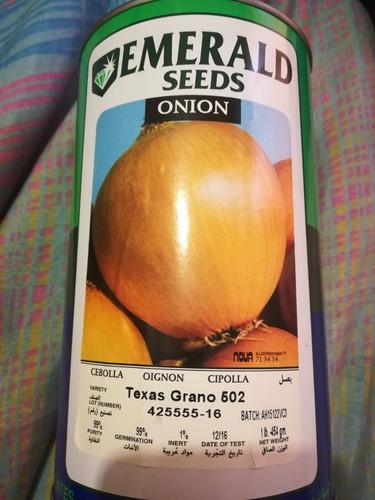 semilla de cebolla 502