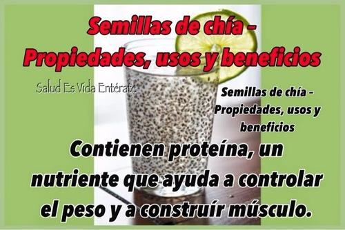 semilla de chia (maxivida)