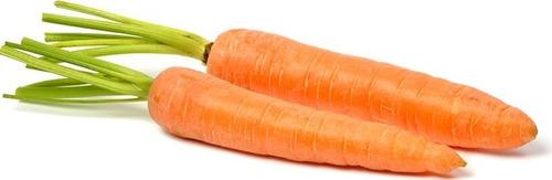 semilla de zanahoria chantenay x 1 libra westar