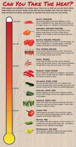 semillas de aji  ( chile )