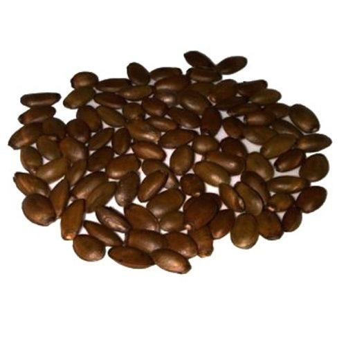 semillas graviola guanabana excelente calidad!!!