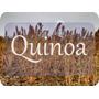 Quinoa Lavada Fresca.desde 3 Kilos A 4500 C/u Reparto Gratis