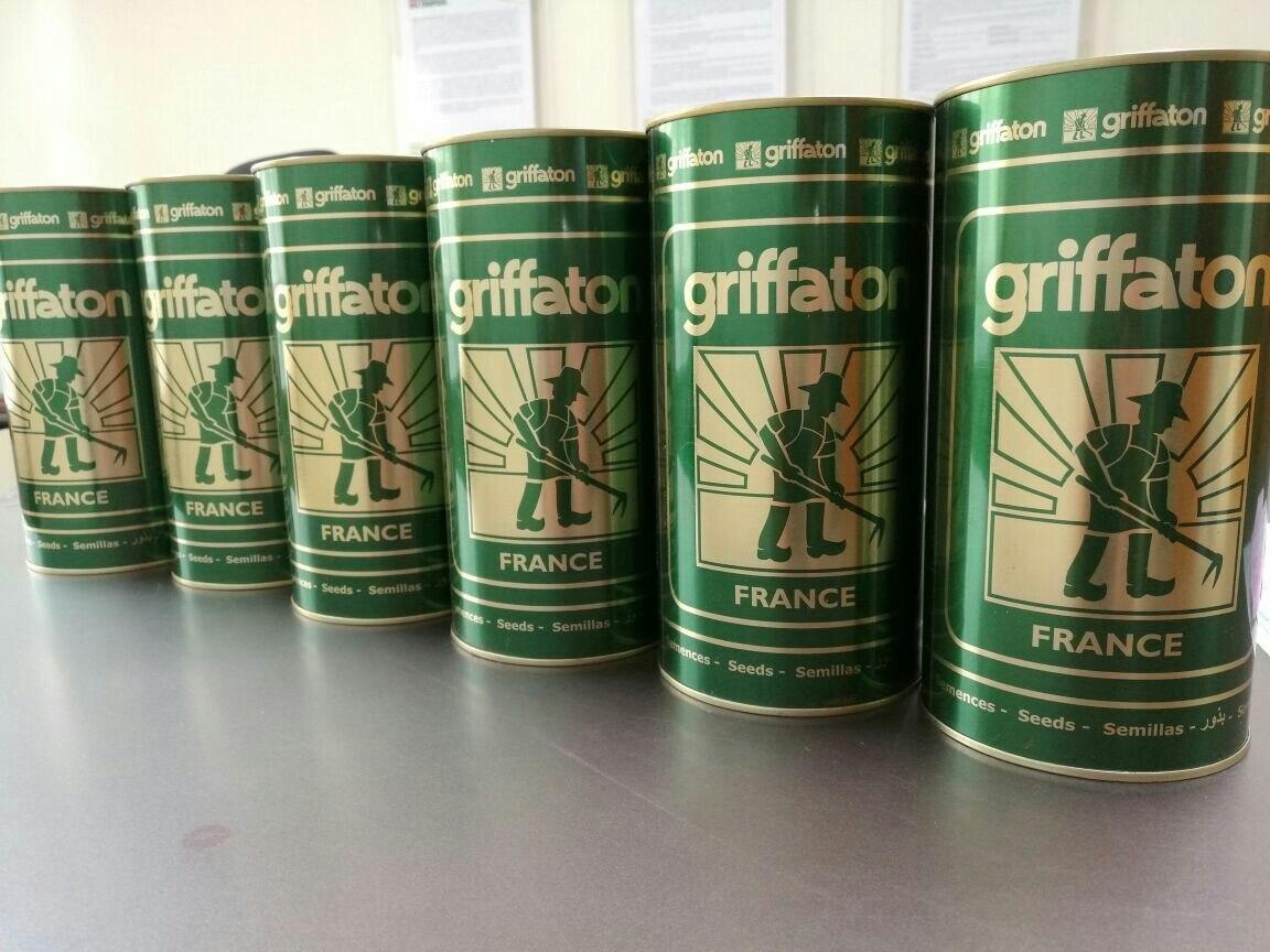 Semillas Zanahoria Danvers Gsn Por Libra 130 000 En Mercado Libre # Muebles Gema Bogota