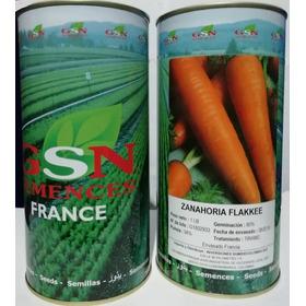 Semillas Zanahoria Flakkee Gsn France