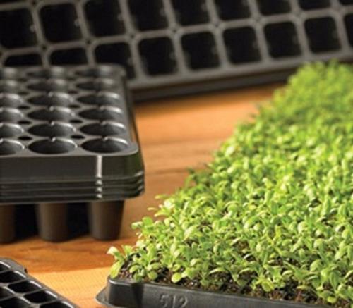 semillero y bandeja para germinar plantulas