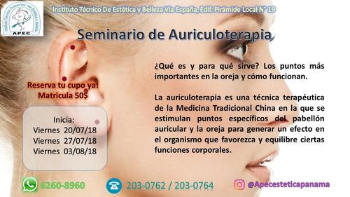 seminario de auriculoterapia