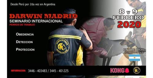 seminario internacional (entre rios)