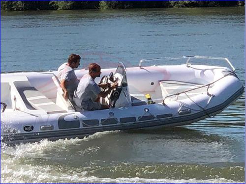 semirrigido 560 equipado con 115 hp de rabia evinrude etec