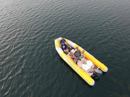 semirrigido 560 sea runner v profunda ideal lagos y mar 2020