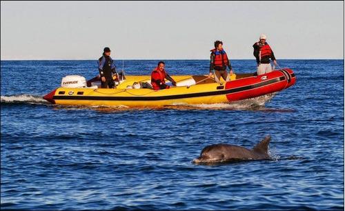 semirrigido 6.70 kiel suzuki 0 horas 115 hp 4t pesca, paseos