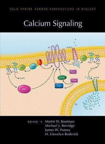 señalización de calcio (perspectivas de cold spring harbor