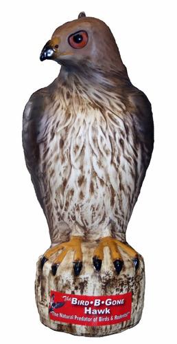 señuelo bird b gone mmrth1 hawk decoy