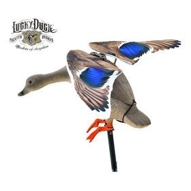Señuelo Pato Electrico Lucky Duck Caza