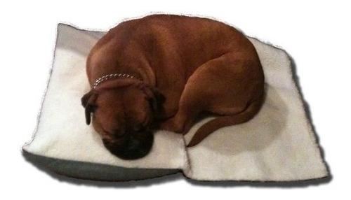 separación alivio de la ansiedad cama para perro