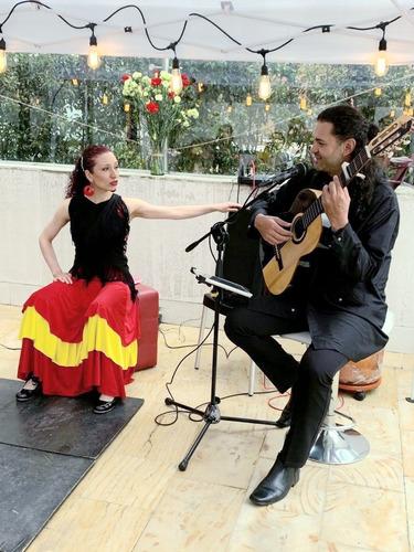 serenata virtual, regalo musical en línea