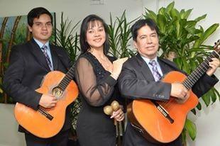 serenatas en bogota bolero musica de cuerda variada duo/trio
