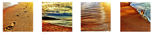 series fotográficas de autor