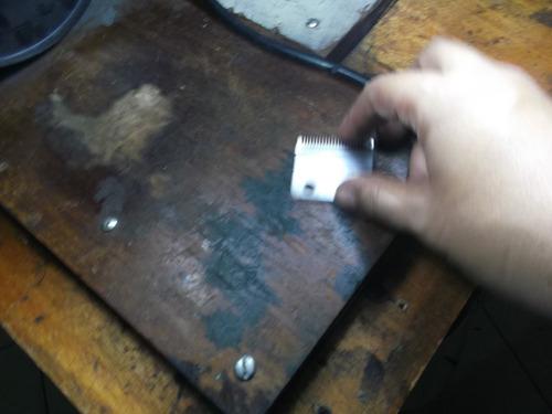 servicio de afilado  hojillas whal ,tijeras, e.t.c.
