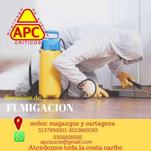 servicio de desinfeccion  sanitizacion y fumigacion apc boli