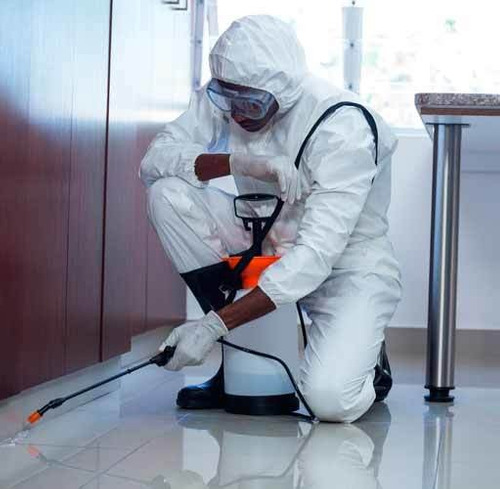 servicio de desinfección y sanitización contra covid19